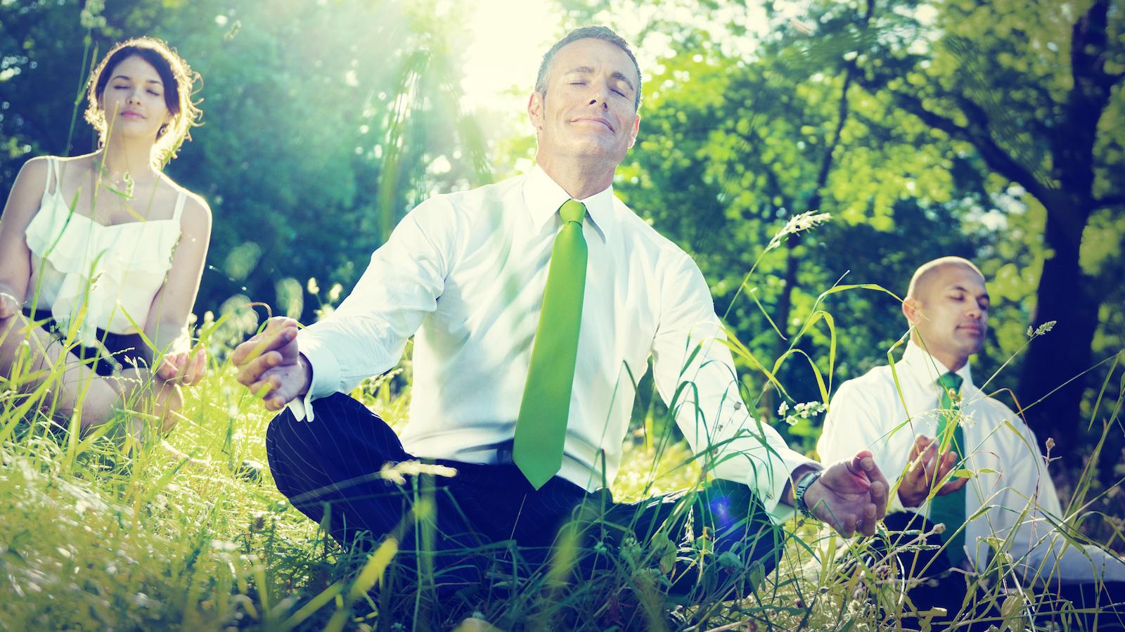 Business people meditating in field. Image: Dreamstime